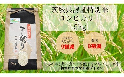 『『茨城県特別認証米コシヒカリ』の画像』の画像