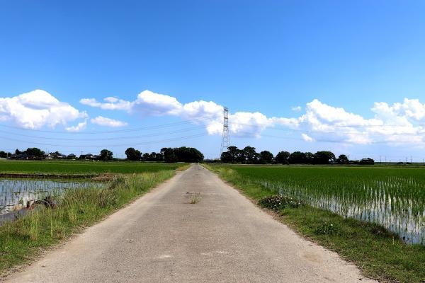 『『田園風景No.2』の画像』の画像