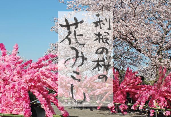 『利根の桜の花みこし』の画像