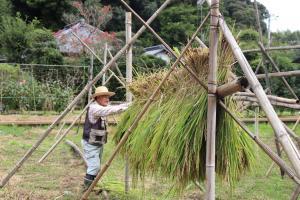 『稲刈り干』の画像